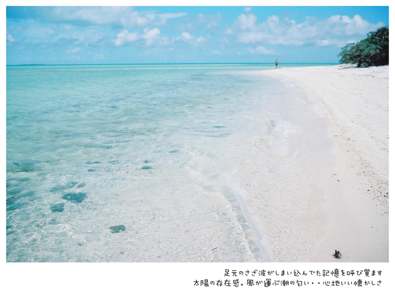FH320019.jpg
